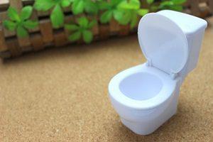 洋式トイレやイスの生活は腰痛に繋がります